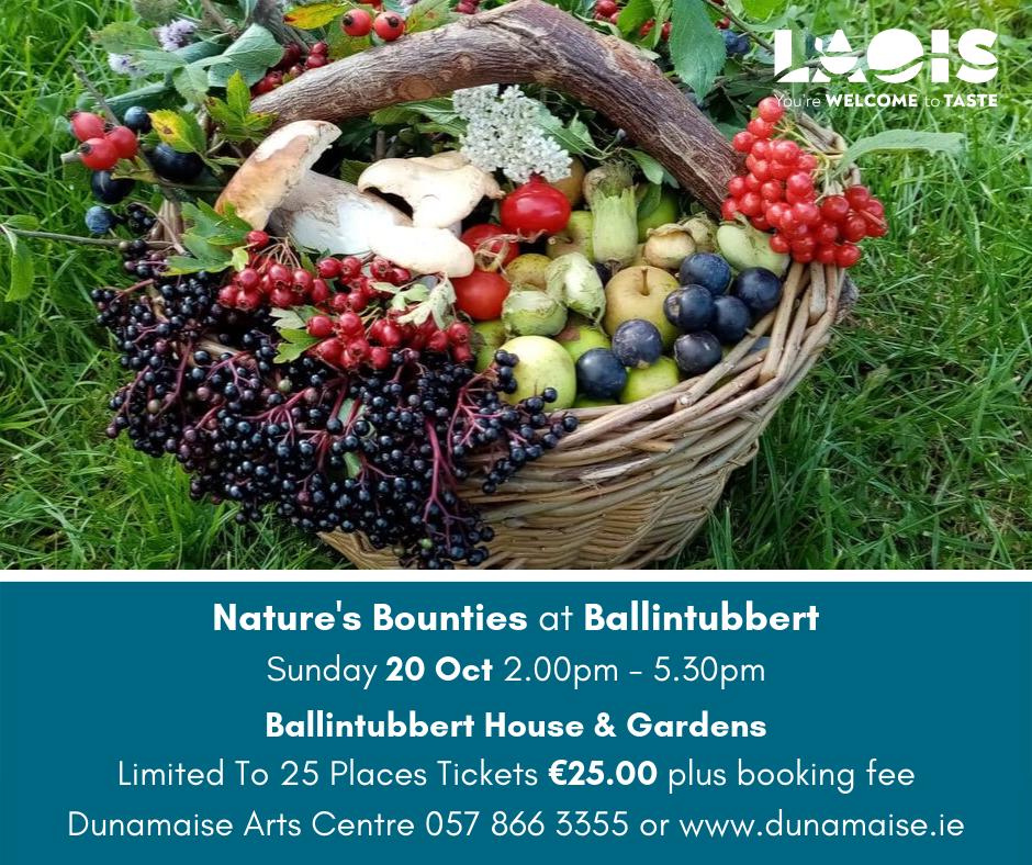 Natures Bounties at Ballintubbert